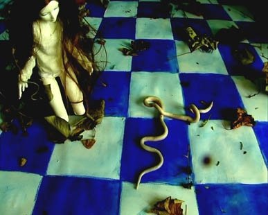 Video Art, Short Film by Barbara Agreste. Image with a doll on a checkered blue floor watching worms pass by.