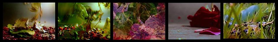 rain-video-art-frames-banner