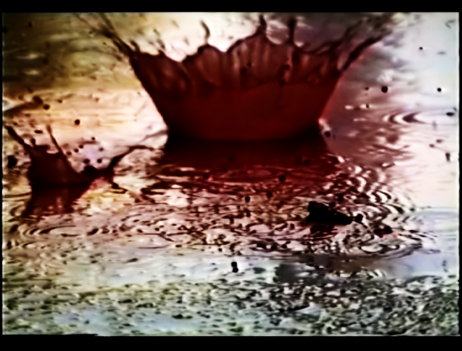Video Art Rain, a still with a drop of blood. An Art film by Barbara Agreste.